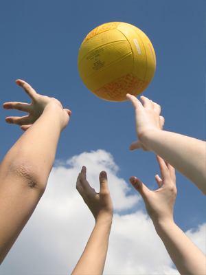 volleyball_web